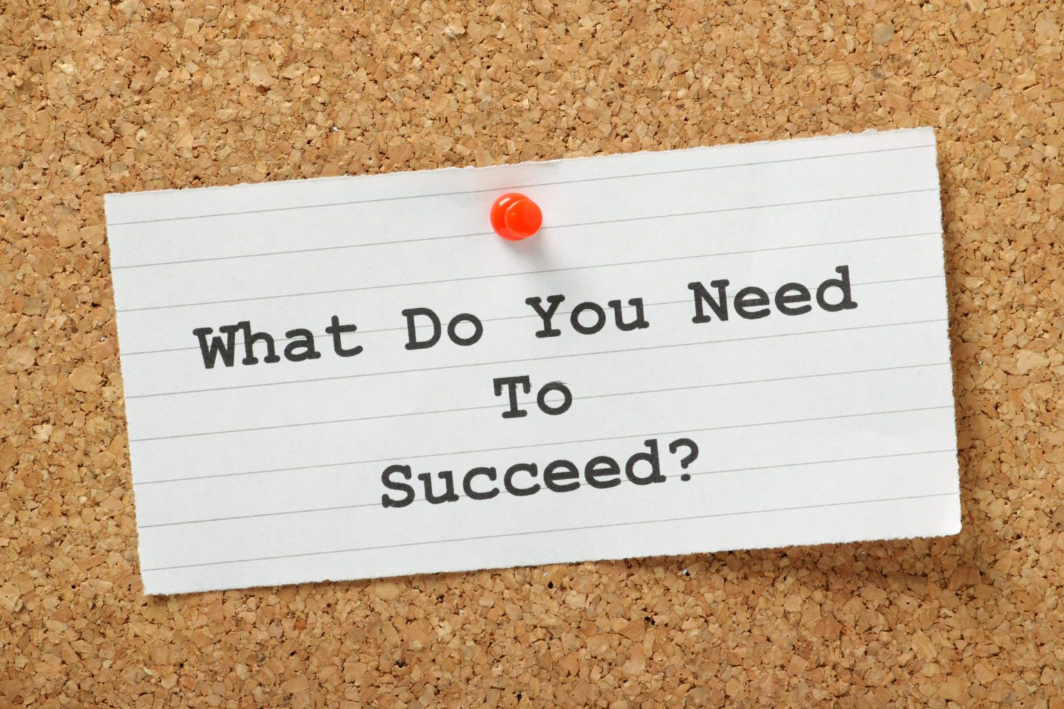 Resource Roundup: 5 Resources to Help Your Nonprofit Thrive